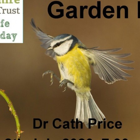 Garden birds talk by Dr Cath Price