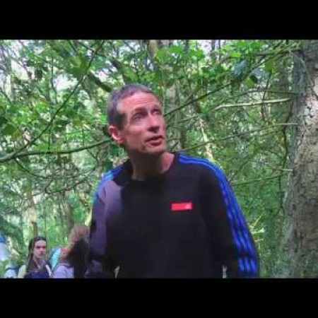 Shropshire pine marten project